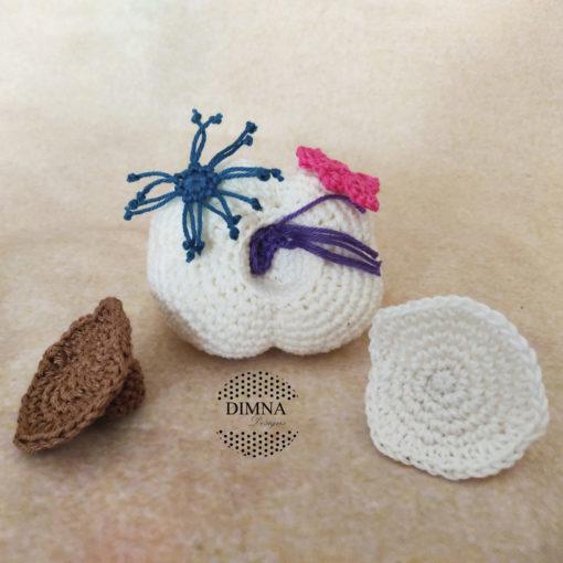 Muela con caries y bacterias de dimnadesigns.com